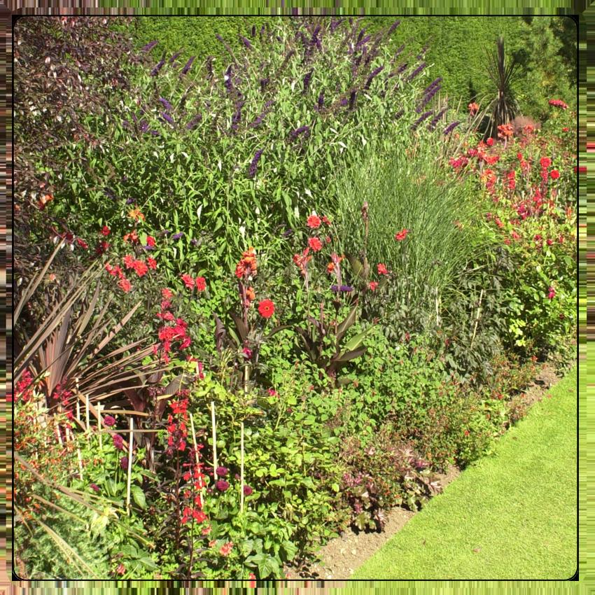 Landscaping Services - Garden